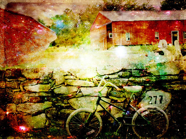 enchanting bicycle