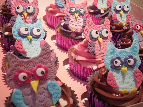 Boxed Girly Owl Cupcakes