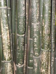 BambooGraffiti