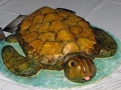 Happy Tortuga