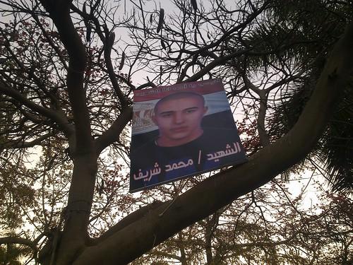الشهيد محمد شريف