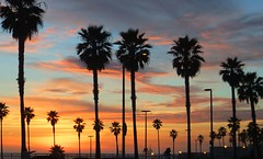 Sunset - Huntington Beach, CA (tossmeanote) Tags: ocean california ca blue trees sunset red sky orange beach colors cali clouds colours pacific huntington sunsets palm sunrises storms distinguishedsunrisesandsunsets tossmeanote