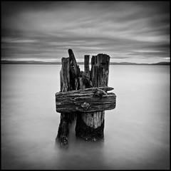 (David Panevin) Tags: longexposure morning sky blackandwhite bw seascape motion beach water clouds landscape object australia olympus lauderdale tasmania e3 beforesunrise sigma1020mmf456exdchsm southarm bwnd davidpanevin