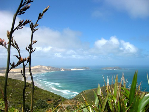 Cape Maria van Diemen, Northland, New Zealand