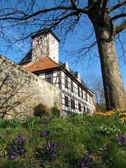 IMG_9271 (KaRoh's Photobox) Tags: castle spring schloss château printemps frühling krokusse welfenschloss 2011 hannmünden
