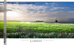 La Soledad (revinhood) Tags: field landscape casa loneliness pentax paisaje campo prado soledad 18200 jerez sigma18200 k100d