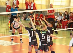 SC Potsdam - SWE (66) (Michael Panse) Tags: erfurt volleyball bundesliga swe volleyteam scpotsdam