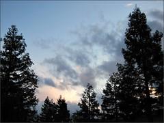 Friday night sky
