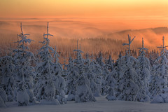 Sauerland sunset (Axel_Hahn) Tags: snowflake christmas xmas schnee trees winter sunset sky mountain snow cold ice nature silhouette forest sunrise germany weihnachten landscape countryside frozen woods scenery december sonnenuntergang crystal dusk snowy magic horizon country hill seasonal verschneit dramatic atmosphere berge loveit fantasy alemania nrw romantic wintertime snowfall kalt eis wald chill climate neujahr snowscape peacful gebirge tannen sauerland winterberg willingen winterlandschaft abendstimmung wow2 schneefall weihnachtlich vereist schneeflocken hochsauerland tannenbume hochsauerlandkreis flickrsbest kahlerasten boscoso minustemperaturen wintermotiv abendrotsauerland flickrstruereflection1 magicmomentsinyourlifelevel2
