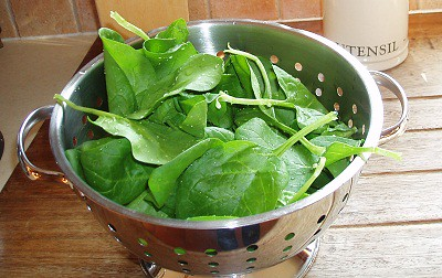 Spinach From the Grow bed