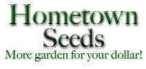 logo-hometown copy