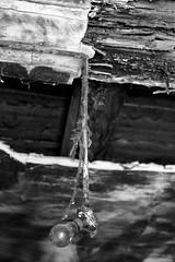 abandoned paper mill #2 (Gabriele Kahal) Tags: blackandwhite bw italy white black abandoned canon lost ruins italia industrial decay rusty bn forgotten urbanexploration urbana abandonment bianconero decayed biancoenero gabriele treviso verlassen vittorio rovine urbex industrialdecay veneto rovina industriale abandonedfactory abbandono galvani abandonedfactories abbandonato archeologiaindustriale industrialarcheology dimenticato decadimento cartiera fabbricaabbandonata esplorazione kahal fabbricheabbandonate esplorazioneurbana nibbach gabrielekahal cartieragalvani