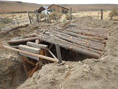 2016 Bitner Ranch Root Cellar Project (blmcalifornia) Tags: history historic blmcalifornia california blmnevada nevada outdoors archaeology wildlife desert ranch preservation bureauoflandmanagement blmcareers outdoorcareers conservation past publiclands heritage