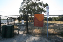 Heirisson Island (superholly0926) Tags: australia kangaroo perth causeway   perthcity heirissonisland