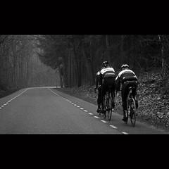 (Hans van Reenen) Tags: road bw forest cycling cyclist nederland thenetherlands cine bos fietsen underway wielrennen arbolitos wielrenner molenhoek s5pro silkypixpro heumensebaan 20110201