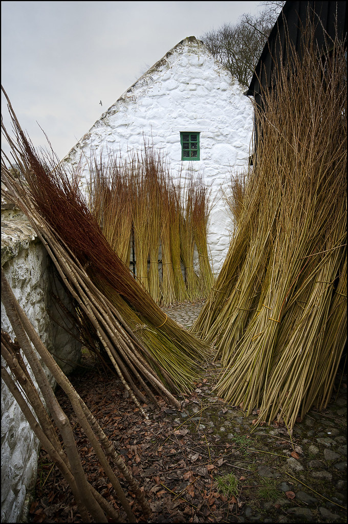 The Willow Weaver's Yard