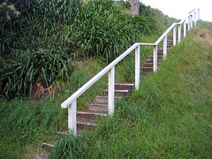 Stone Steps on Mt. Victoria (pr0digie) Tags: newzealand white stone stairs landscaping country hill steps staircase railing hillside devonport mtvictoria
