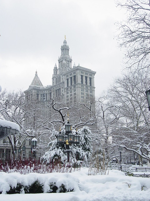 New_York_Central_Park_winter