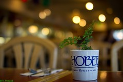 Hobee's California (Roy Prasad) Tags: california leica travel vacation usa white holiday coffee breakfast 35mm ceramic photography restaurant dof bokeh f14 glaze sanfranciscobayarea mug prasad asph hobees summiluxm royprasad sonyalphanex5 leica3514summiluxm
