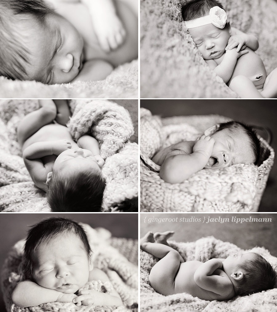 kansas newborn photography
