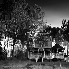 La Maison de la Lune...!!! 1/9 (Denis Collette...!!!) Tags: trees wild lake canada haven reflection tree art reflections lac inner reflet arbres qubec impressions arbre reflets photosafari impression impressionist paix sauvages sauvage philosophie impressionists wildlake impressionistes impressionniste notredamedemontauban havredepaix deniscollette mkinac lacsauvage photossafari innerhaven maisondelalune truthandillusion img82072