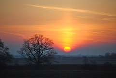 Shine on, shine on! (Tobi_2008) Tags: trees sunset sky color nature field germany landscape deutschland sonnenuntergang searchthebest saxony natur feld himmel ciel sachsen tobi landschaft sonne farbe bume allemagne germania doublyniceshot mygearandme