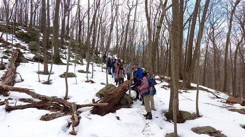 Group descending a hill