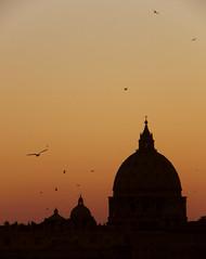 Atardecer (lautada) Tags: roma atardecer basilica vaticano cupula sanpedro