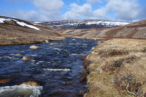 Brown Cow Hill above River Gairn