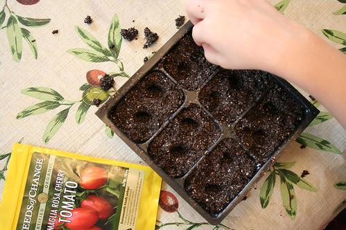 starting_seeds