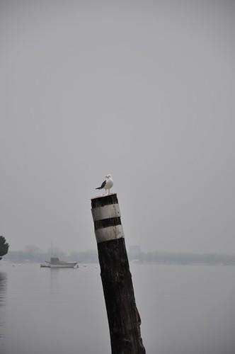 Lago Maggiore by tanajun2011