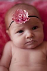 _DSC0160 (xJenandJuicex) Tags: 50mmf14 babyphotography naturallightportrait nikond5000