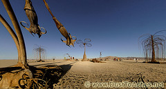 Burning Man 2010 Infinitarium by Karen Cusolito BM 10 burningman (Dust To Ashes) Tags: pictures park trees party people sculpture man art metal by garden fire photography photo sticks wire view desert angle photos 10 flames nevada wide picture surreal playa karen burningman nv blackrockcity burning ashes installation brc bm huge theme ash metropolis dust reno setting duststorm scrap salvage rods playful bruno sculptures ales materials summervacation 2010 welded gerlach installations summerfestival desertparty burningmanart cusolito burningmanfestival bm10 dusttoashes alesprikryl wwwdusttoashesnet burningman2010 bm2010 infinitarium burningman:art=721 desertlandscapape firefountainsanduniquesolarpoweredlightingeffects