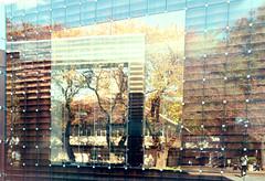 sou fujimoto (areyouany) Tags: wood sky reflection building tree art glass japan architecture tokyo university library sou nipon fujimoto teikoku