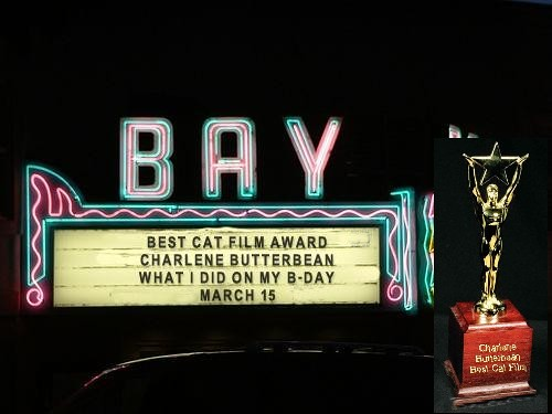 cb bday 2011-f