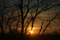 IMG_5863 (Claire Kandle) Tags: sunrise wintersunrise ohiosunrise