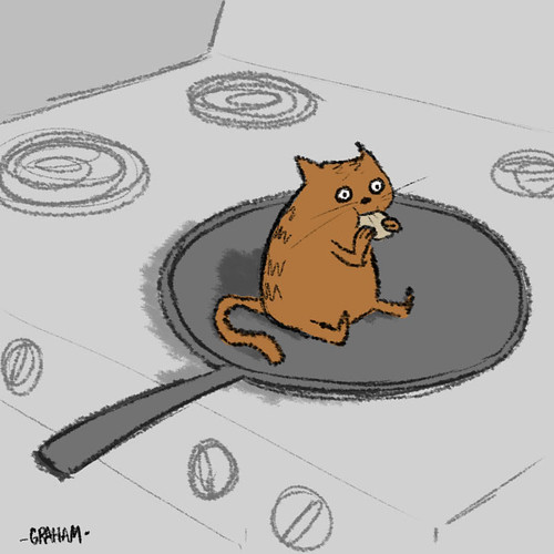 Pancake for kitty