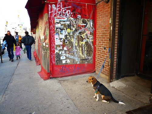 Alphabet City,East Village,New-York-City-2011-03-20-9