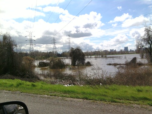 Discovery Park from Garden Highway