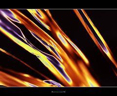 Burn . . . . . . . . (Borretje76) Tags: light orange abstract black color colour macro art netherlands dutch photoshop fire gold iso100 golden licht purple artistic kunst sony sigma dreams glimmen nik f56 zwart enschede oranje paars lijnen goud vuur kleur 180mm minoltaamount gupr borretje76 dslra580 sonya580samplepictures sonya580sampleimages