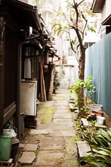 Shimokitazawa green alley : Setagaya, Tokyo, Japan / Japn (Lost in Japan, by Miguel Michn) Tags: street verde green japan garden tokyo calle alley plantas cityscape   setagaya shimokitazawa herbage tokio japn shimokita    jardin japon callejon