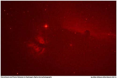 Horsehead and Flame Nebula Ha Test
