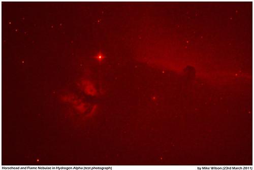 Horsehead and Flame Nebula Ha Test