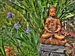Tara in the Garden of the 3D Purple Irises, Handheld HDR (Walker Dukes) Tags: sanfrancisco california pink flowers red orange plants white black color green colors leaves yellow statue stone canon landscape gold golden 3d flora god blossoms gray goddess magenta seeds dirt buds sfbayarea blooms ferns horticulture diety photomatix tonemapping canons95