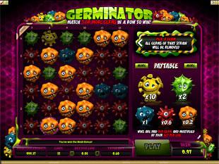 free Germinator gamble bonus game win