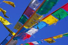 spirit's voice (kangxi504) Tags: tibet china prayerflag darchor