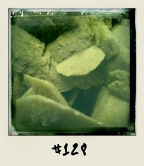 "#DailyPolaroid of 23-1-2011 #128 • <a style=""font-size:0.8em;"" href=""http://www.flickr.com/photos/47939785@N05/5388652144/"" target=""_blank"">View on Flickr</a>"