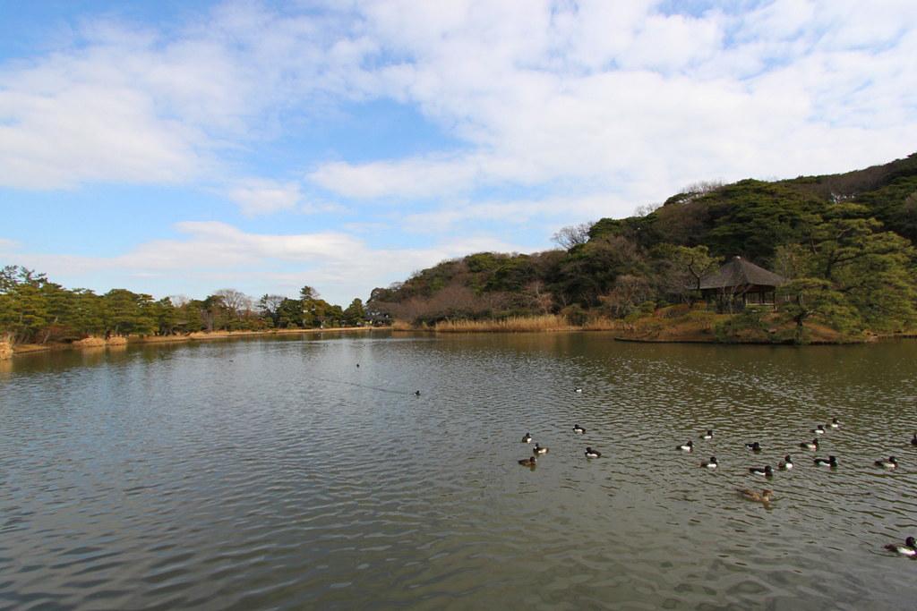 Sankei-en (27)