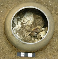 Picture 6 (Pot A): Large areas of skull.