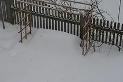snow 080